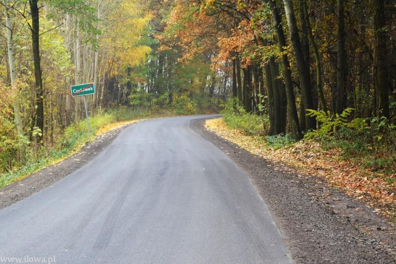 Droga w Czyżówku